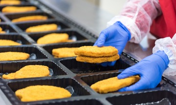 close up of food factory worker's hands in blue gloves placing chicken schnitzel into packaging