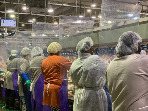 Plastic barriers between workers in full PPE at a Tyson Foods meat and poultry plant